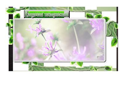 превью-2для-кладовой (399x302, 121Kb)