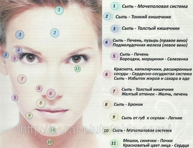 image004.jpg 27.52 KiB Просмотров: 2571.  Комментарий к файлу: диагностика по лицу.  Вложение.