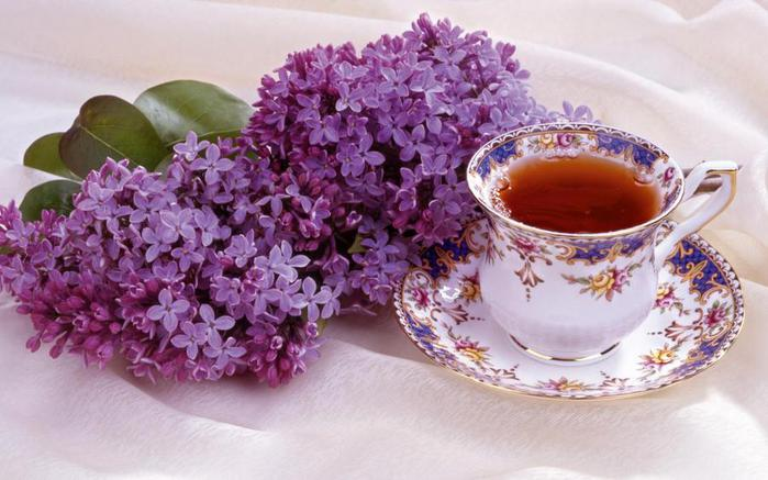 lilac_and_tea_widescreen_wallpaper_38906 (700x437, 53Kb)