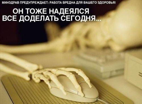 череп (600x438, 41Kb)