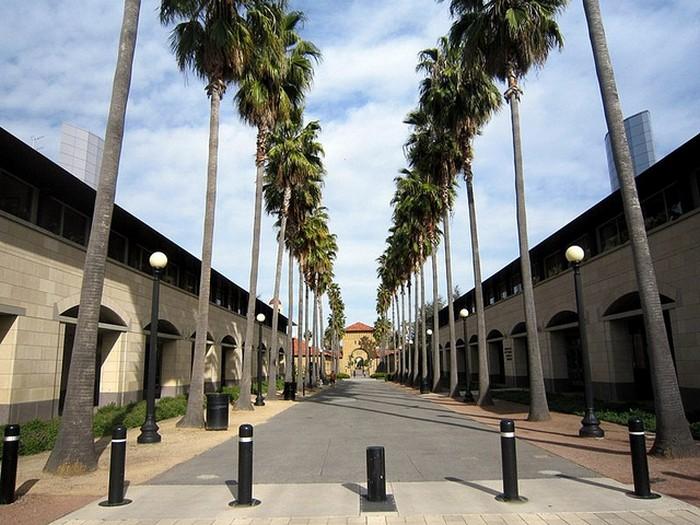Стэнфордский университет - самый красивый университет в США 17 (700x525, 118Kb)