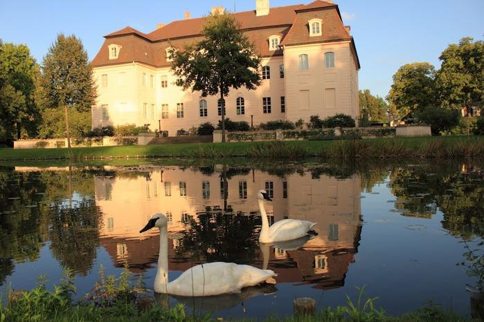 Парк и замок Браниц 96895