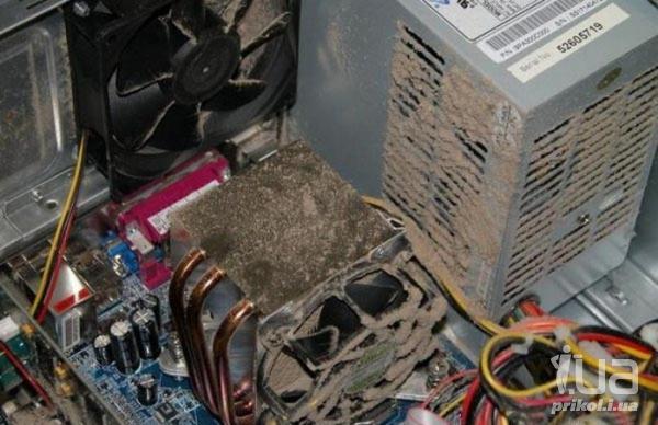 Чистка компьютера от пыли  (600x388, 46Kb)