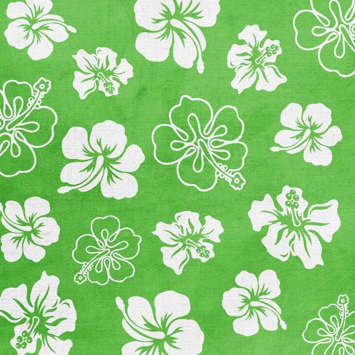 SummerDriggs_FlipFlopsicles_GreenFlowerPaper (700x700, 484Kb)