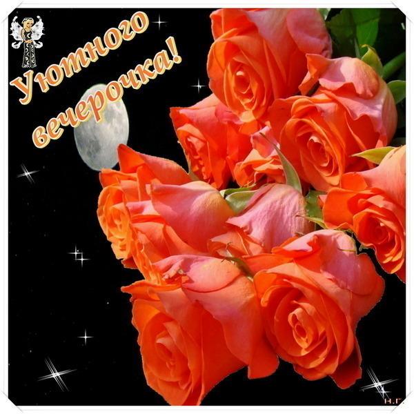 Доброй ночи открытки с цветами 41