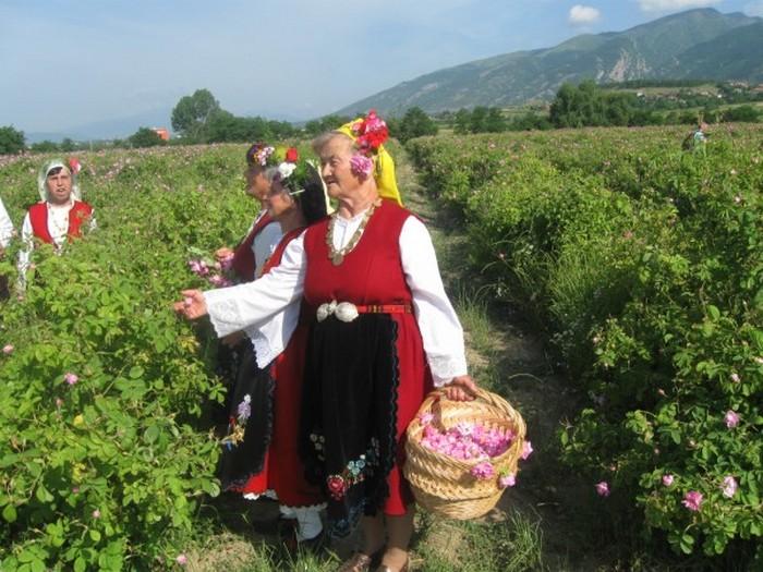 Долина Роз в Болгарии 4 (700x525, 124Kb)