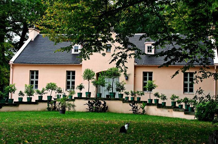 Парк и замок Браниц 44967