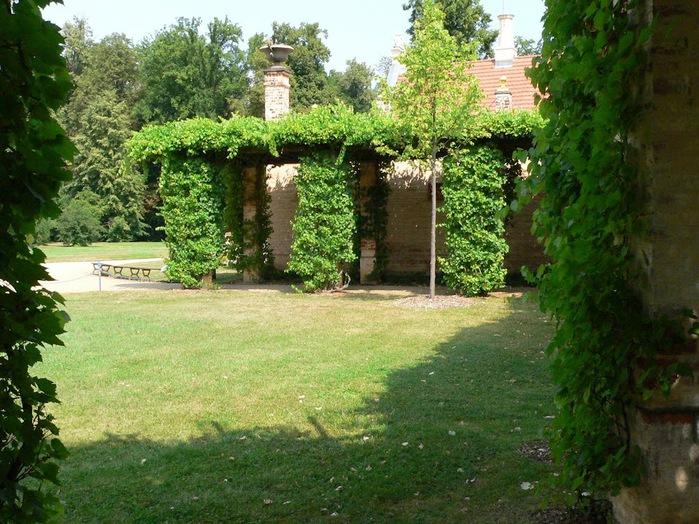 Парк и замок Браниц 66256