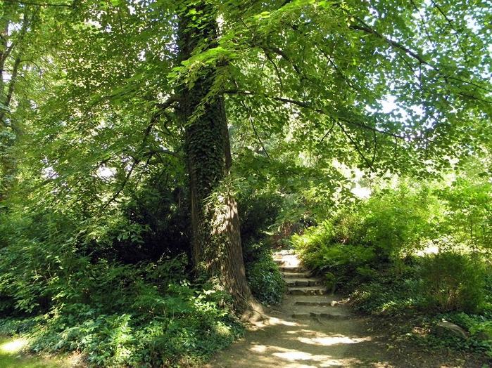 Парк и замок Браниц 65105