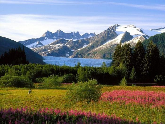 Alaska (700x525, 68Kb)