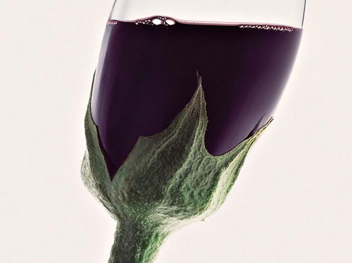 Креативная посуда фотографа Jean-Francois De Witte 3 (700x523, 61Kb)