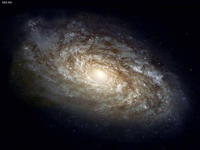 683232_spiralnaya_galaktika_2_ (700x525, 80Kb)