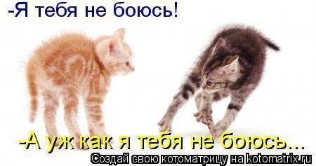 20121807173543 (450x237, 20Kb)