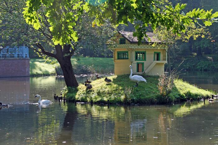 Парк и замок Браниц 14876