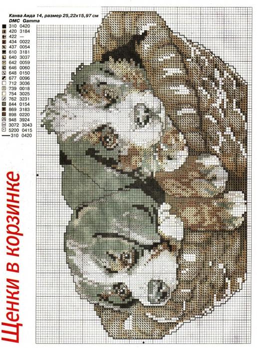 щенки/2777768_scan_4 (515x700, 382Kb)