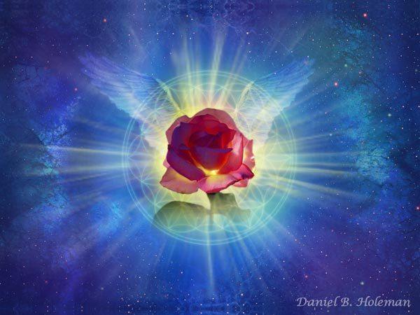 цветок Любви (600x450, 44Kb)