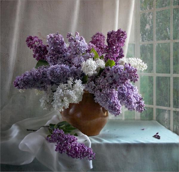picturecontent-pid-4c536 (550x525)