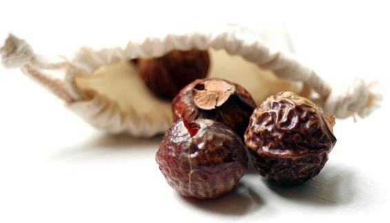 мыльные орехи для стирки (566x323, 92Kb)