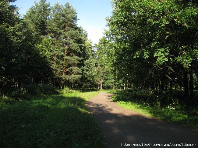Александровский парк/1413032_IMG_0461 (650x488, 228Kb)