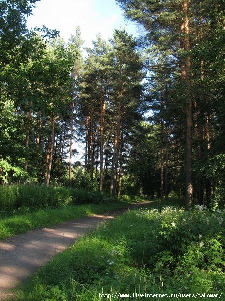 Александровский парк/1413032_IMG_0464 (450x600, 231Kb)