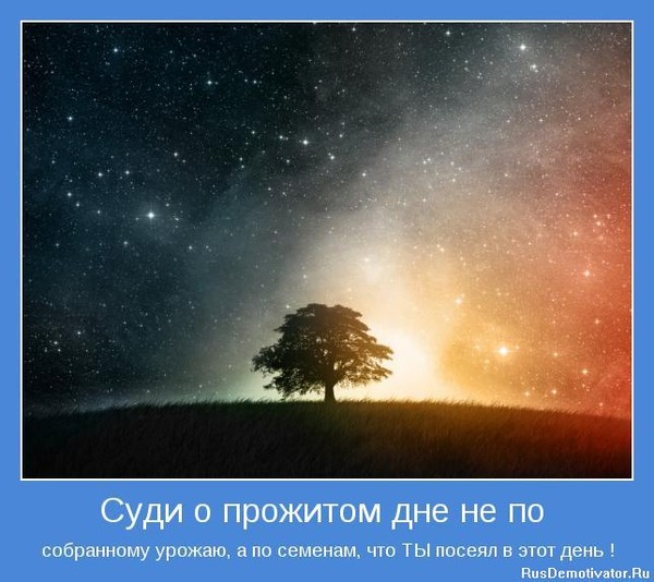 1274887166_motivator-5448[1] (600x534, 76Kb)