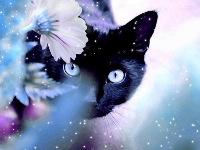 3419483_63337_kot_zima_kwiaty (700x525, 68Kb)