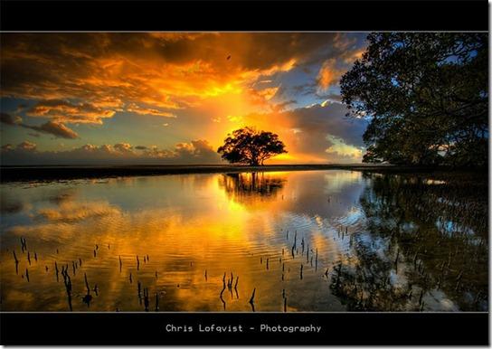 sunrise-photography-3 (544x386, 67Kb)