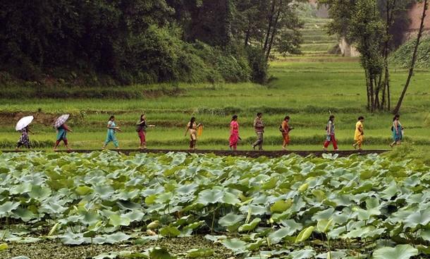 Панчами фестиваль, Катманду, Непал, 24 июля 2012 года