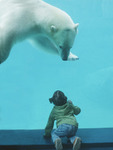 Превью Polar-Bear-and-Girl (377x500, 49Kb)