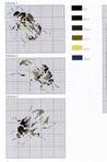 Превью kn001 (29) (461x700, 204Kb)