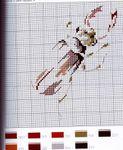 Превью kn001 (119) (575x700, 112Kb)