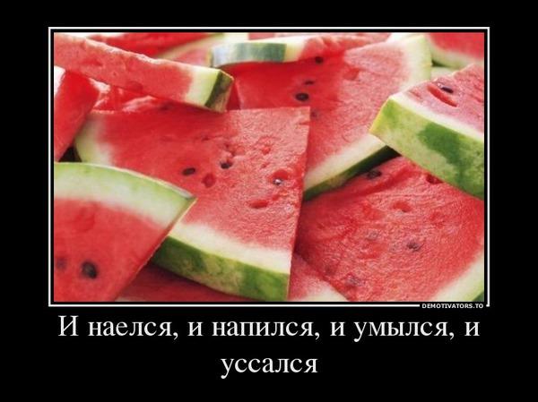 75575715860249_63913090_i-naelsya-i-napilsya-i-umyilsya-i-ussalsya (600x449, 57Kb)