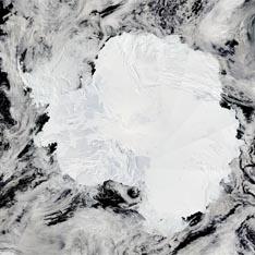 Антарктида 3 (234x234, 42Kb)