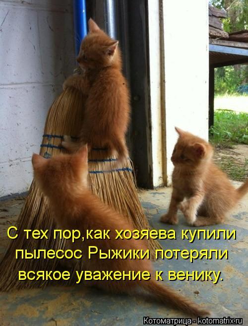 kotomatritsa__ (500x657, 59Kb)