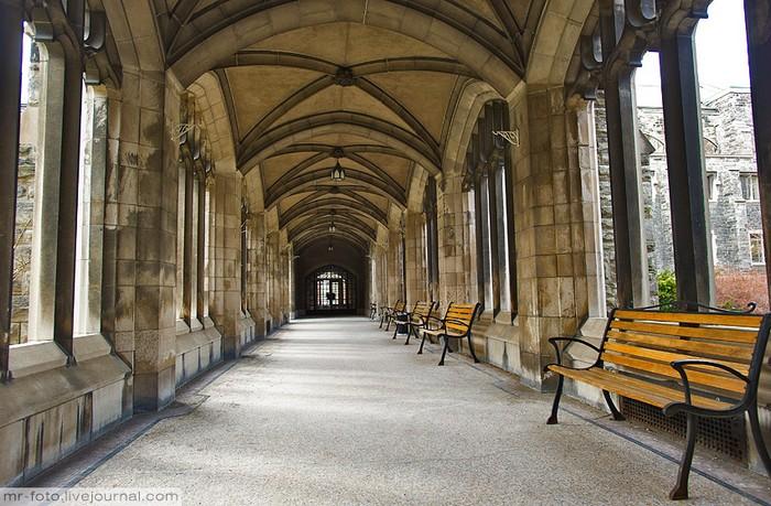 Фото-путешествие в Университет Торонто 6 (700x459, 124Kb)