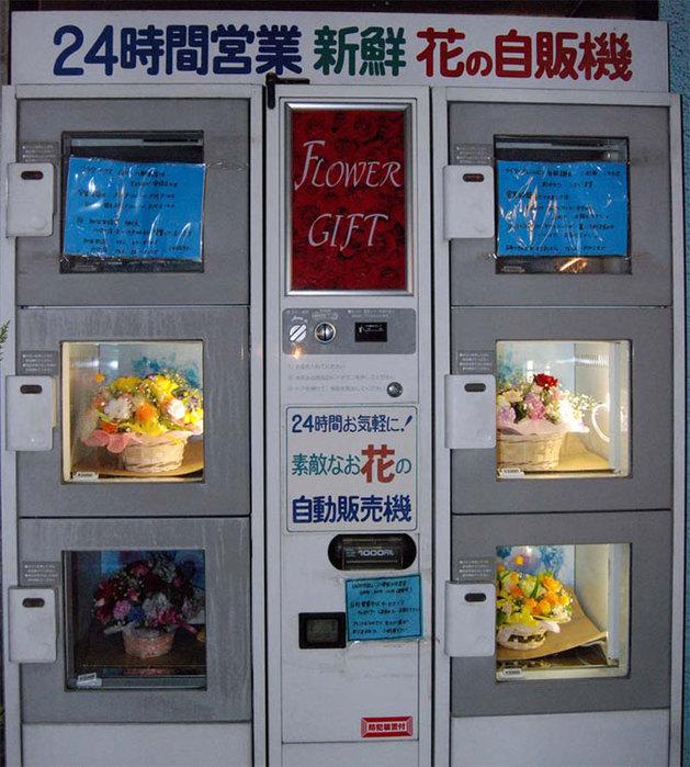 торговые автоматы япония 4 (629x700, 121Kb)