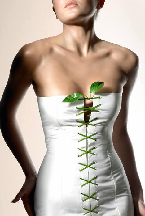 статья белкина зиновия о гречневой диете