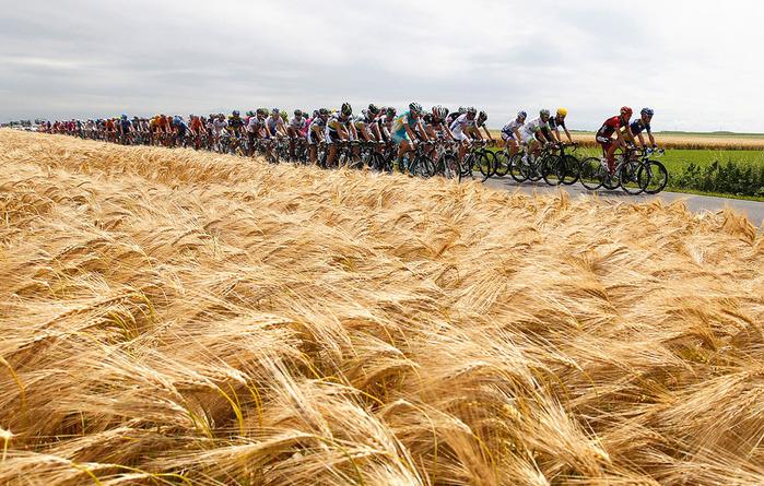 велогонка тур де франс 2 (700x445, 206Kb)