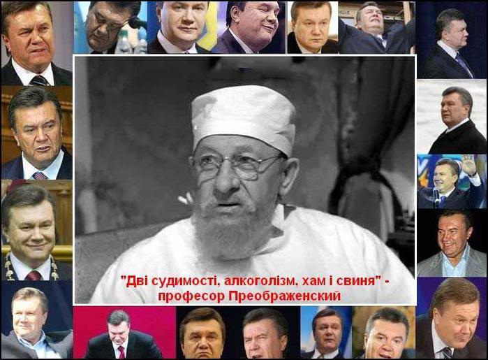 89710492_Hba_scho_z_alkogolzmom_shanovniy_pan_profesor_ne_vluchiv_Vse_reshta_v_yabluchko (699x515, 64Kb)