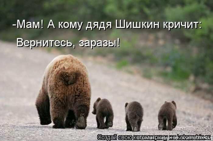 1342938394_kotomatritsa_10 (700x466, 110Kb)
