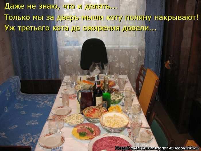 1342938439_kotomatritsa_16 (700x525, 141Kb)