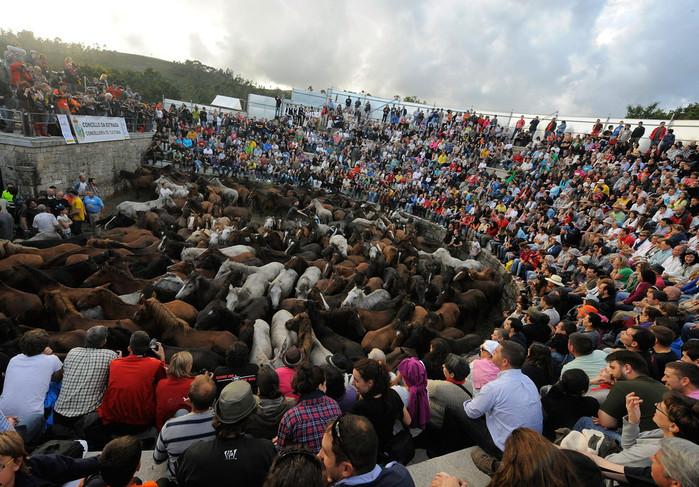 фестиваль клеймения лошадей испания 8 (700x487, 168Kb)