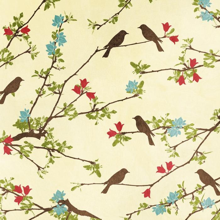 SummerDriggs_ComfortsOfHome_BirdsAndBranchesPaper (700x700, 422Kb)