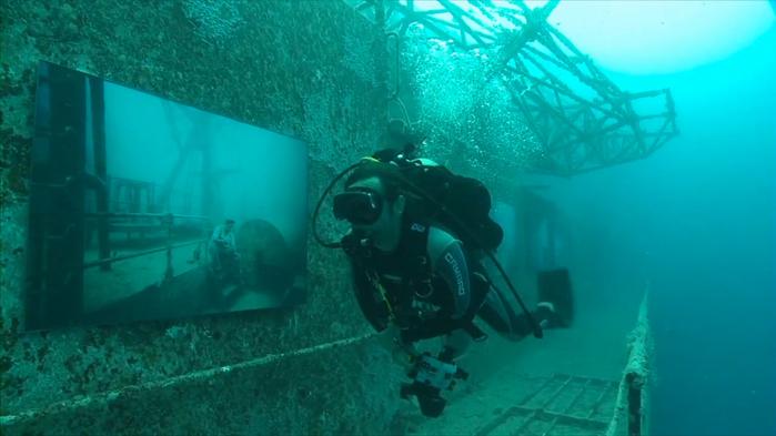 подводная фотография дайвинг (700x393, 185Kb)