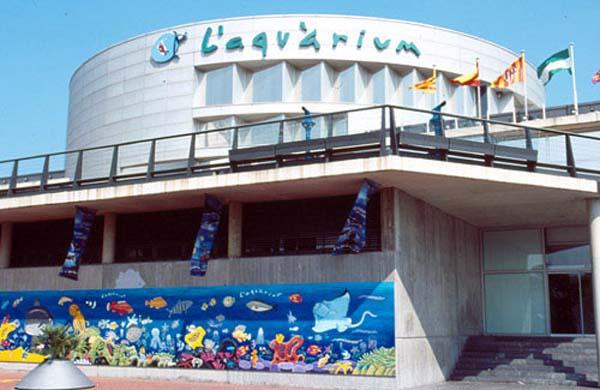 аквариум в барселоне (600x390, 65Kb)