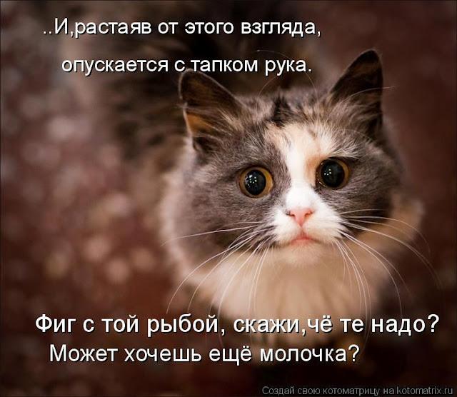 2835299_pervaya (640x556, 92Kb)