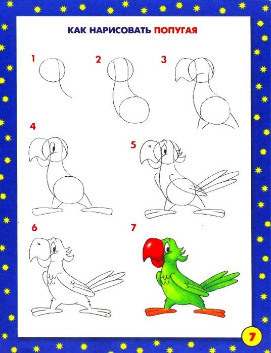 попугай (536x700, 101Kb)