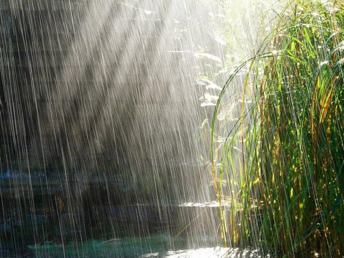 Серебряный очищающий  блок 90001498_4278666_Nature_Other_Rain_024252_