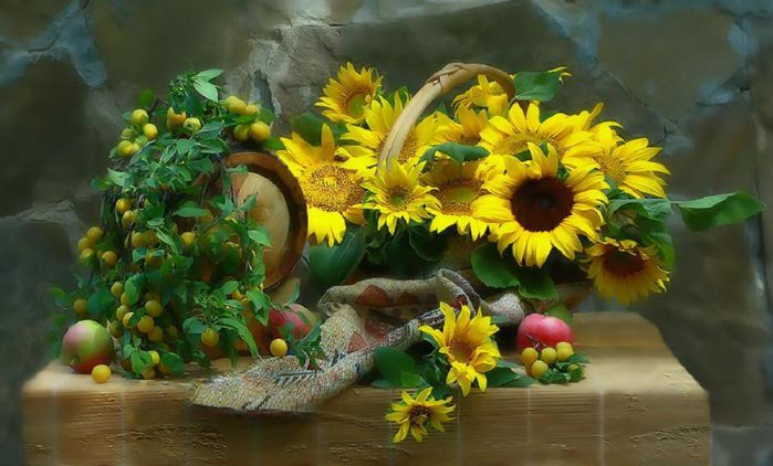 Sunflower Still Life (700x422, 52Kb)