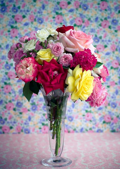 rosas-147-2 (500x700, 402Kb)